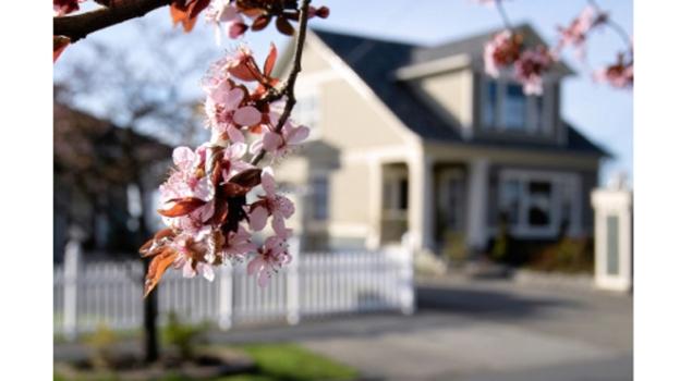 spring-home